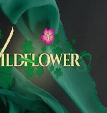 Watch Wildflower April 3, 2020