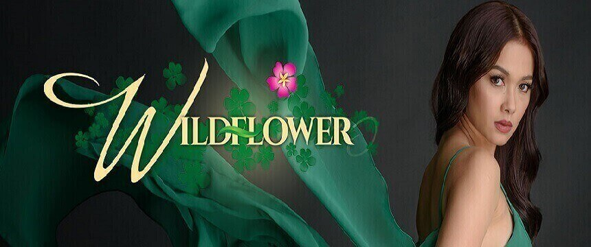 Wildflower April 7, 2020 Pinoy Network