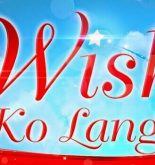 Watch Wish Ko Lang April 4, 2020